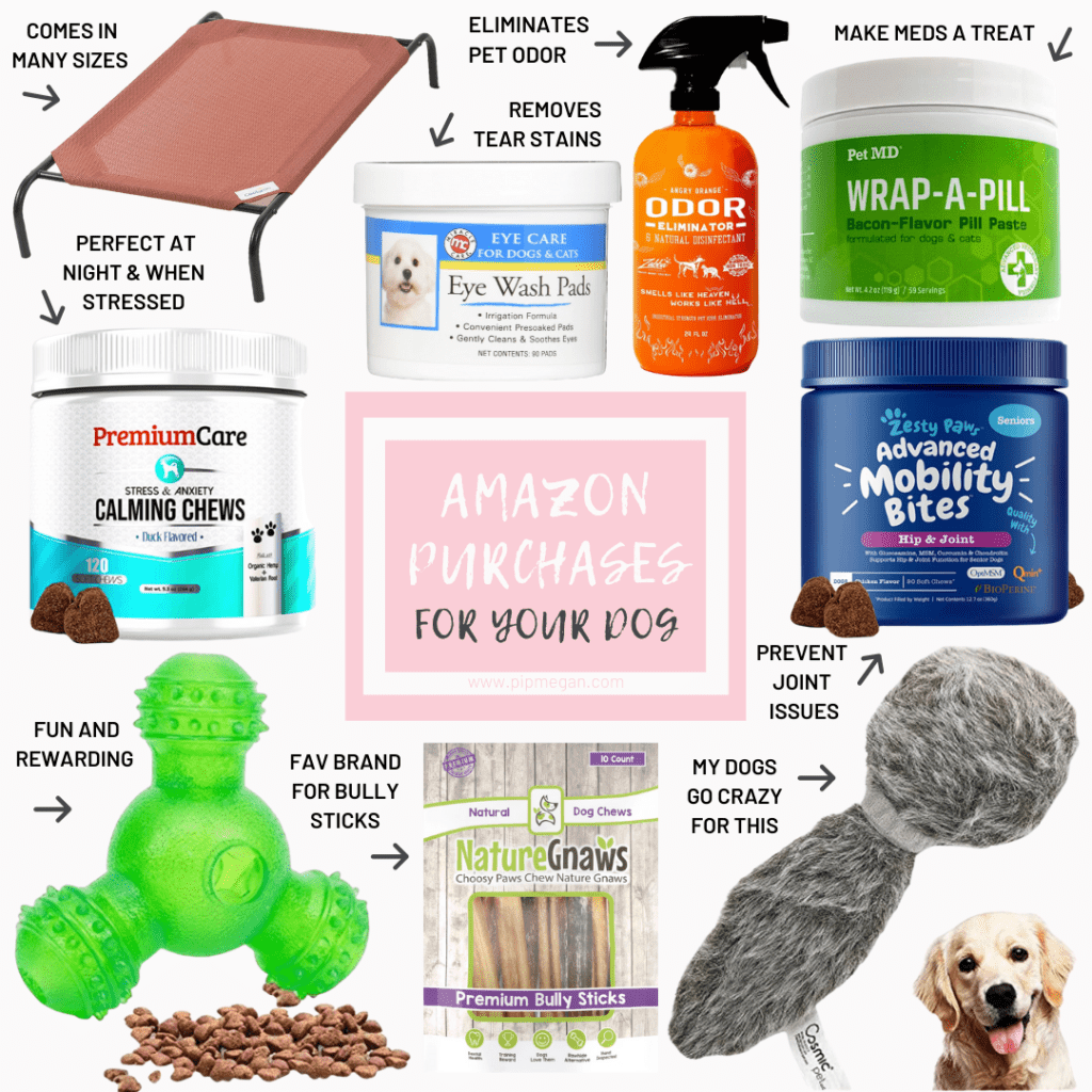 Must-Have Amazon Purchases for Your Dogs